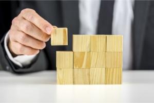 שיטת ההצלחה המודולארית